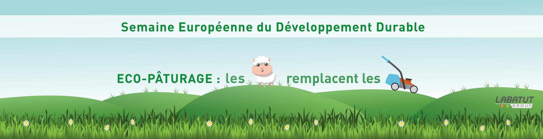 Semaine du Développement Durable : éco-pâturage, les moutons remplacent les tondeuses à Veolog.